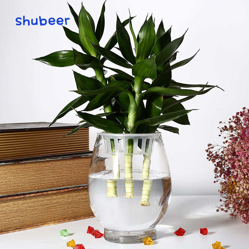 Factory direct sale clear glass vase terrarium big for wedding