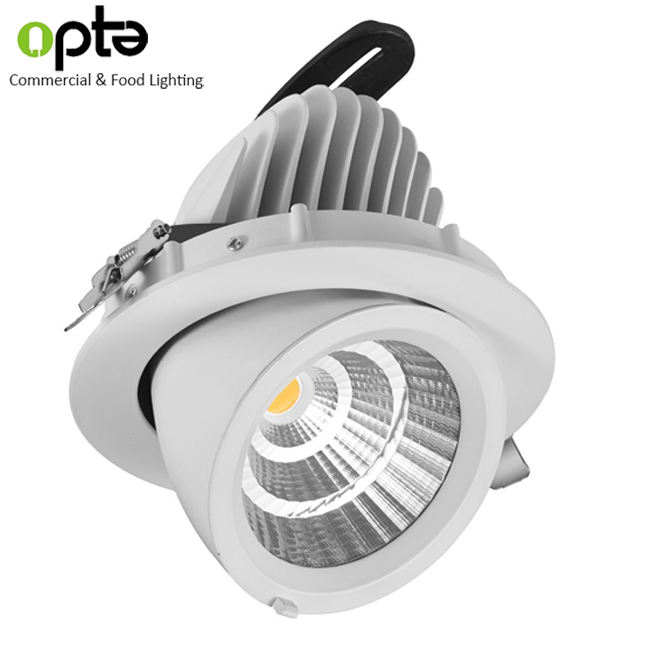 40W special color with pink 180mm 7 inch downlight led light meat with adjustable 360