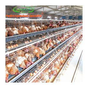 commercial battery cages laying hens sell in algeria
