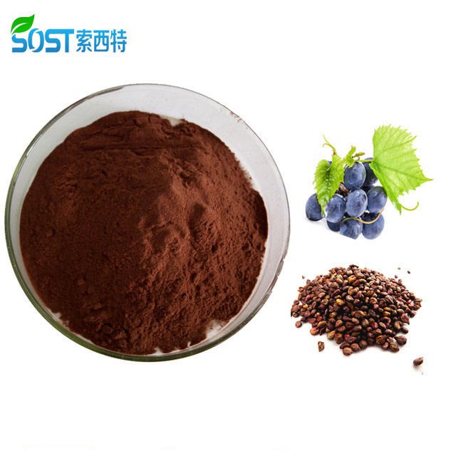 SOST Natural OPC Anthocyanin 95% Organic Grape Seed Extract Powder