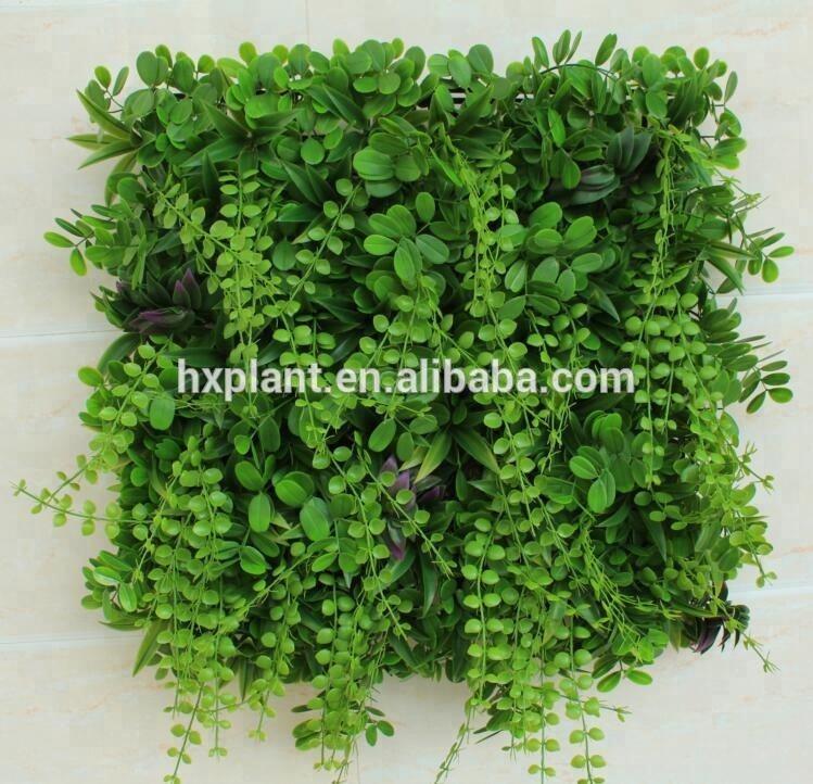 Rouku Accesorio de Pared para trepar Planta Hebilla Fija Eneldo Verde Arte de Pared para trepar Planta de Vid Planta Verde Gancho Autoadhesivo para Interiores