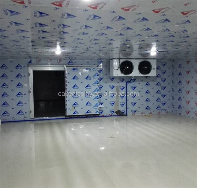 Made in Guangzhou Cold Room for Ice Fruit Vegetable Meat Flower Fish Storage