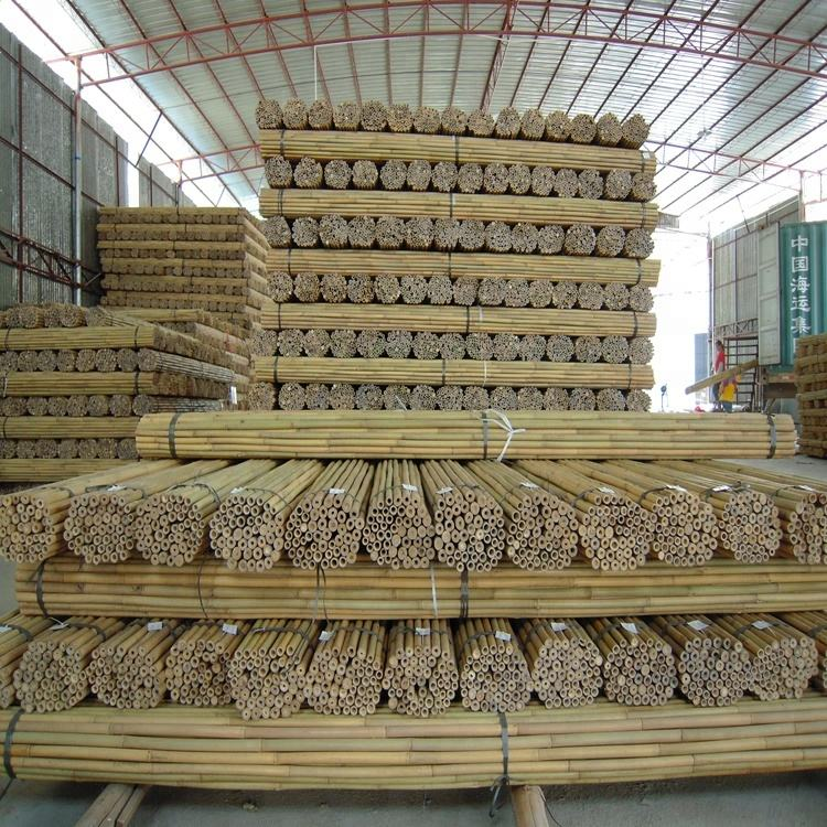 Bamboo raw materials bamboo cane bamboo pole for plant