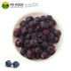 Healthy Snacks Dried Fruit 100% Natural freeze-dried fruit FD food freeze dried Blueberry