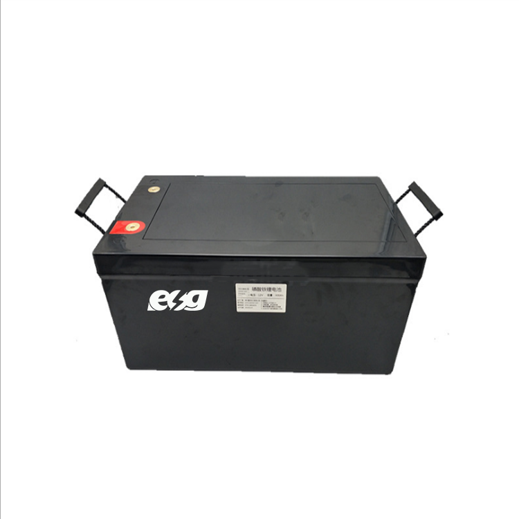 ESG 51.2V 200ah with BMS For Solar ENERGY Good Selling LiFePO4 Lithium Battery Pack