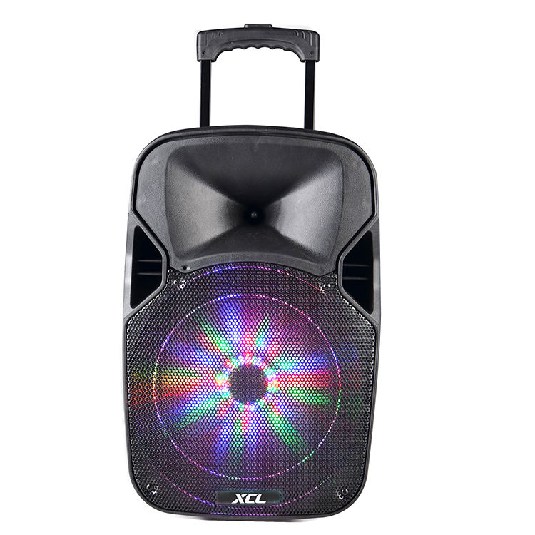 12 inch loud party speaker trolley speaker with fm radio