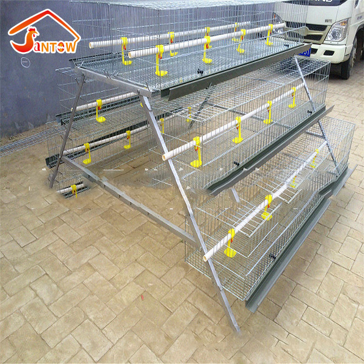 Egg Laying Chicken Cage/Chicken Breeding Cage Galvanized Metal Chicken Cage For Poultry Farm