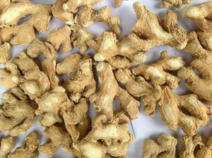 VIETNAM FRESH MATURE GINGER, HALF DRY GINGER, AIR DRY GINGER