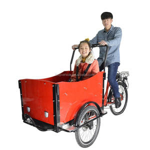 CE family bakfiets pedal assisted 2 front wheel trike electric cargo adult trike scooter