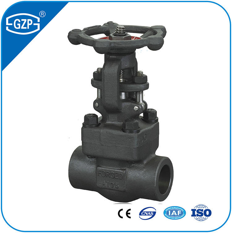 Astm A105 A105N A266-2 A182 F304 F304L F316 F316L F317L A336 F304 F304L F316L Gesmeed Roestvrij Carbon Staal Globe Valve