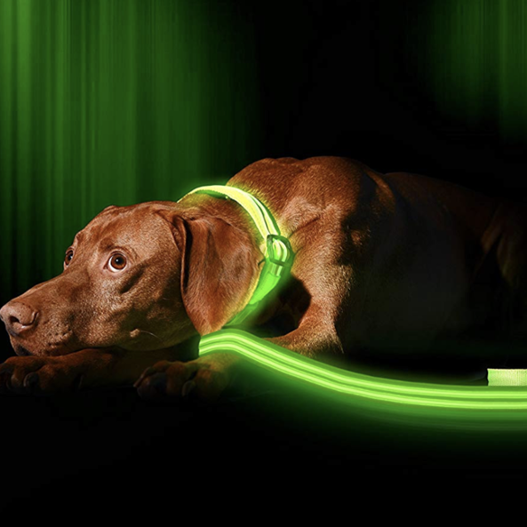 Impermeable doble fibra USB recargable iluminado brillante luz Correa LED perro Collar