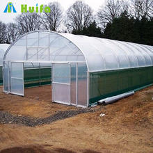 Low Cost Single Span Commercial Used Aquaponic Greenhouse
