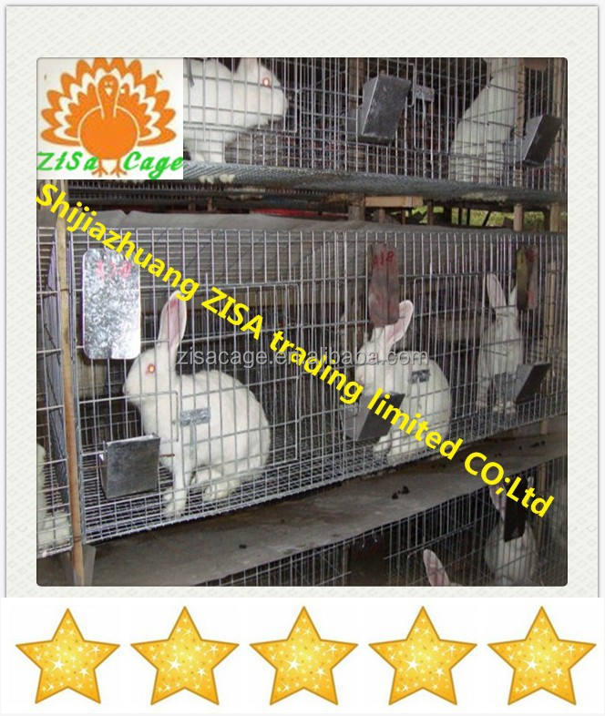24 rabbits Automatic rabbit breeding cage equipment in kenya