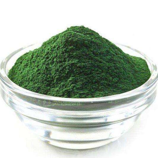 Health supplement Increase Immunity product Protein 60% Spirulina Powder