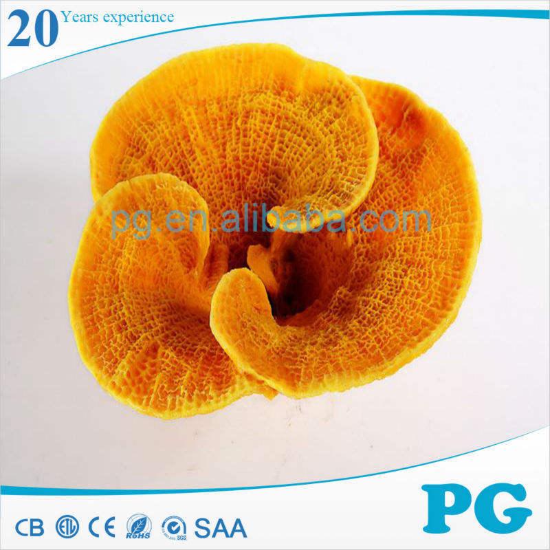 Pg <span class=keywords><strong>aquário</strong></span> enfeites de resina fundo Coral Artificial