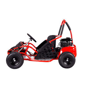 Gratis Verzending Baja Go-Kart Drift Mini Kid Off Road Buggy 48V 1000W Go Kart