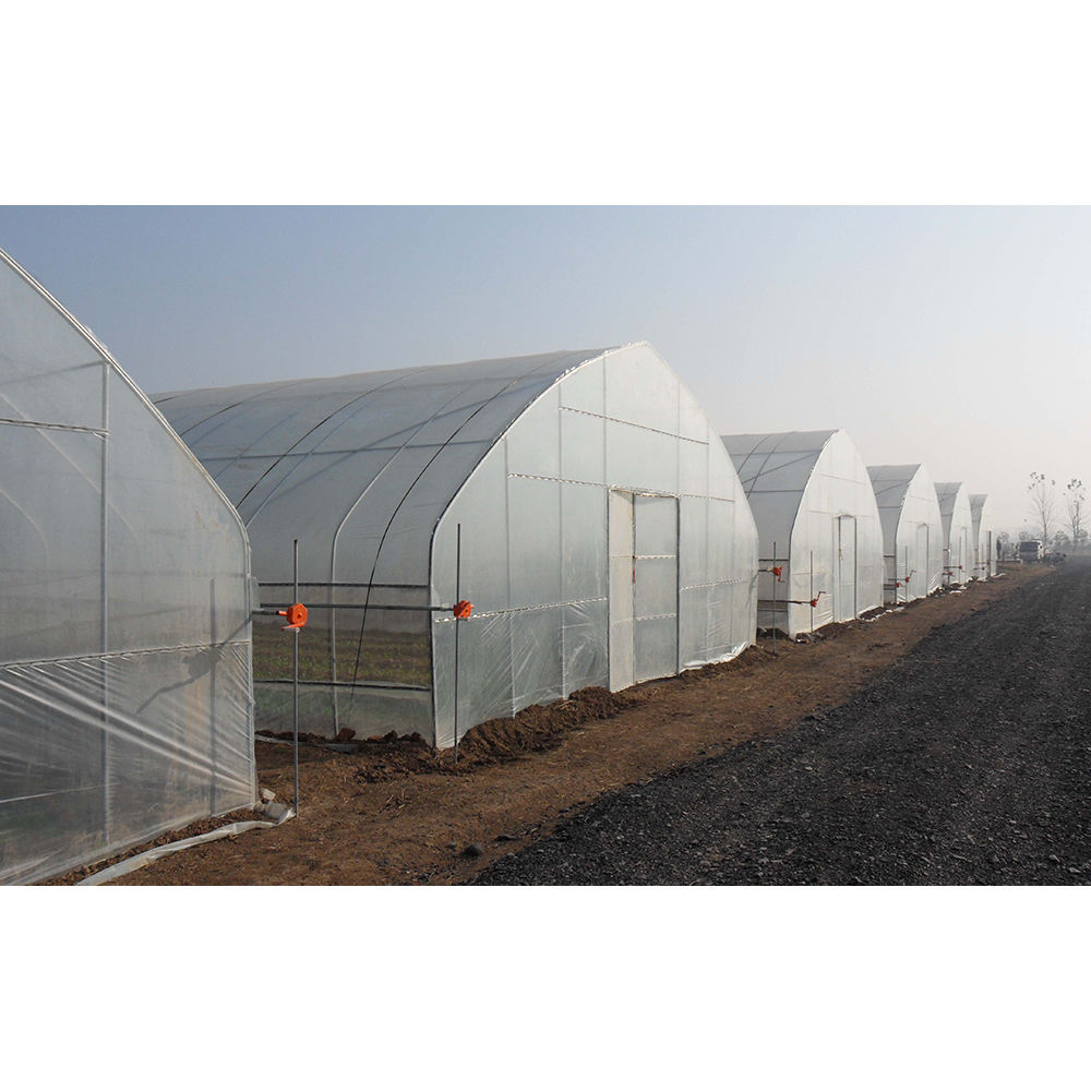 high quality agriculture greenhouse