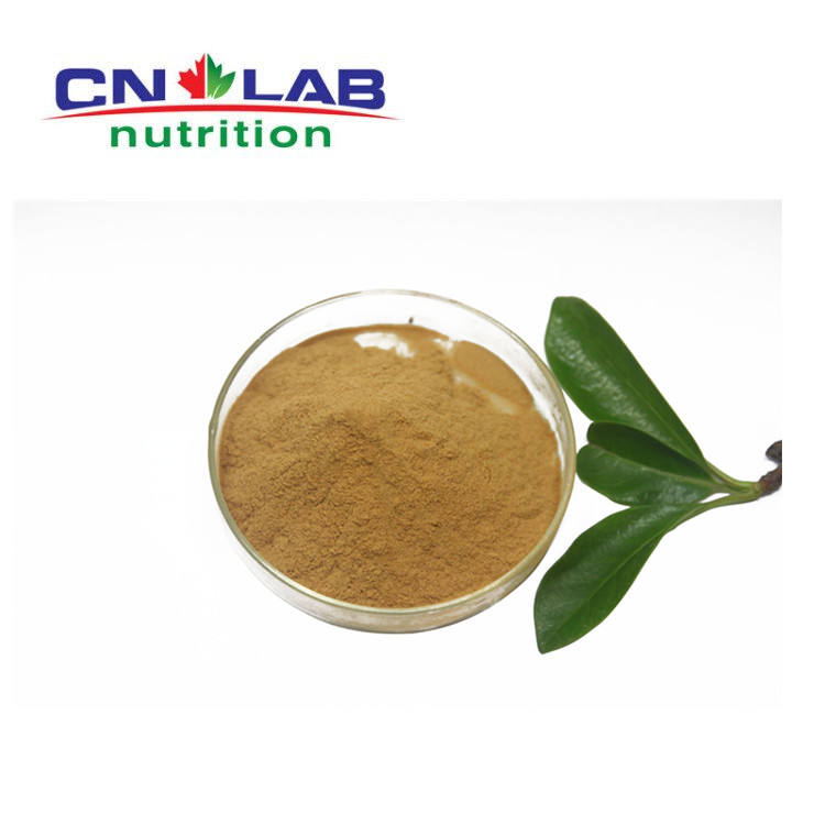 Whole sale fenugreek&methi extract powder in factory,lower price