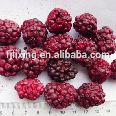 GREEN FOODS 100% NATURAL FREEZE DRIED BLACK BERRY