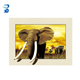 high quality animal elephant 3d lenticular picture customize poster with 5d effect