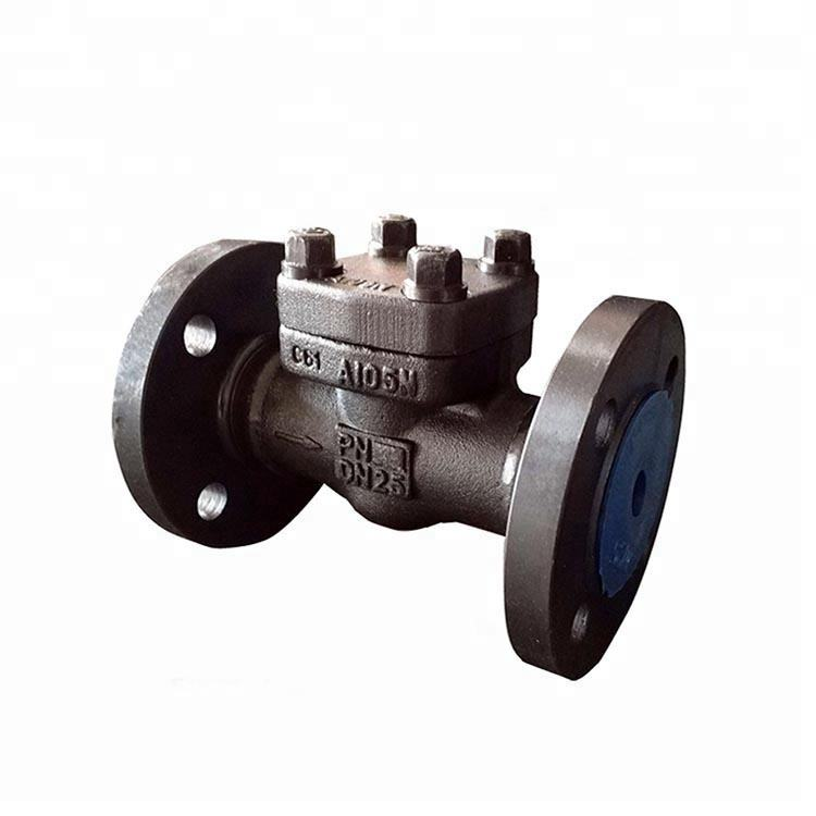 Forged Steel DN25 PN40 Flange Connection Swing Check Valve