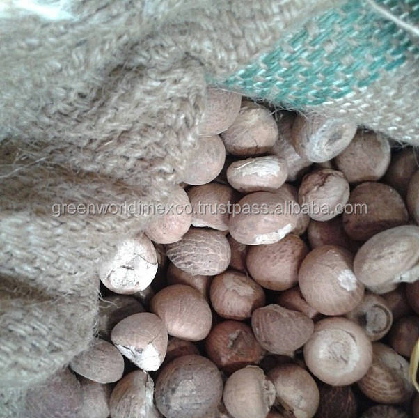 BETEL NUT FOR SELL _ HIGHEST QUALITY AND A LARGE NUMBER