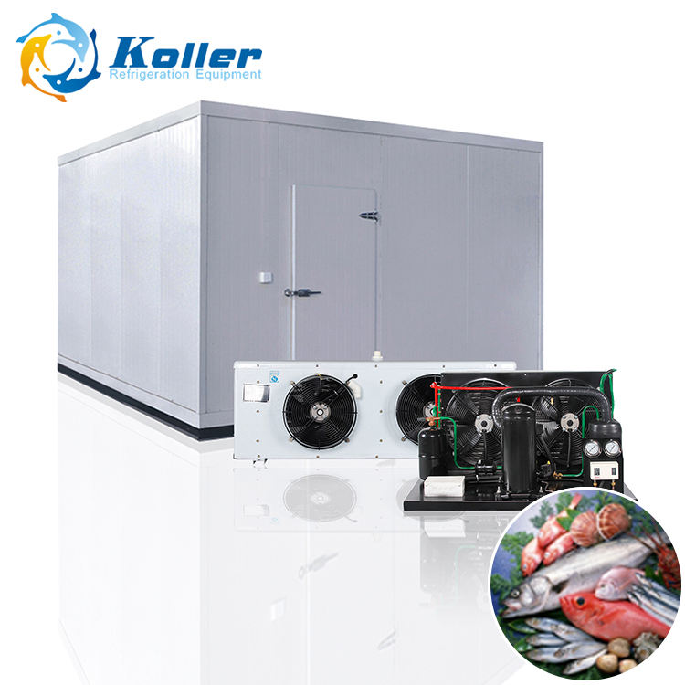 Koller 40cbm 12tons insulated doors cold room with energy saving for fish storage