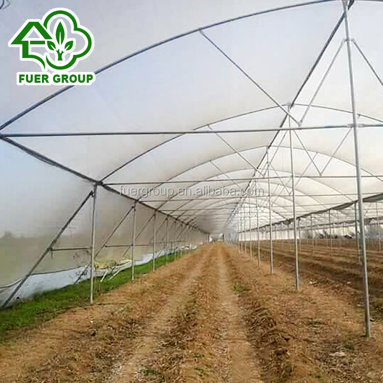 Cheap large size Farm Used Tropical Greenhouses for Tropic Area