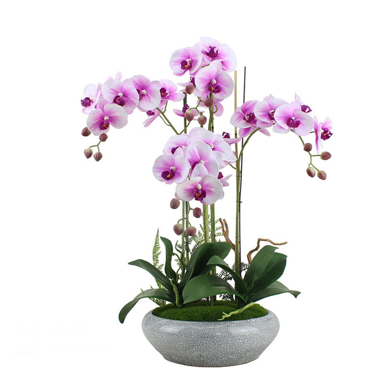 factory wholesale cheap plastic artificial butterfly orchids red orchids decorative flowers