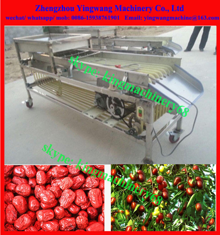 automatic fruits selecting grading machine