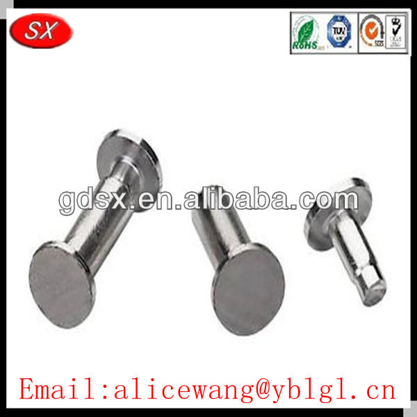 Dongguan cheap sheet metal rivets,solid brass rivets,screw type rivet,ISO9001:2008 passed