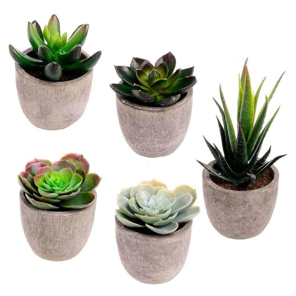 Assorted Decorative Faux Succulent Artificial Succulent Cactus Faked air Plants with Gray Pots, Set of 5