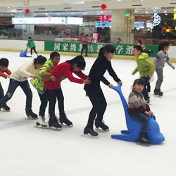 High Quality Skating Rink Equipment Children seal ice Skating assistant ice skates aids for beginner