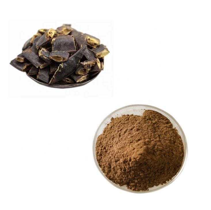 Pure Shikakai Gleditsia Sinensis Extract Powder for Hair Care