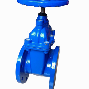 Twenty years of professional foundry production of soft sealing gate valve national standard, German standard F4 and other produ