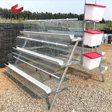 Chicken Layer Cage / Poultry Farm Products
