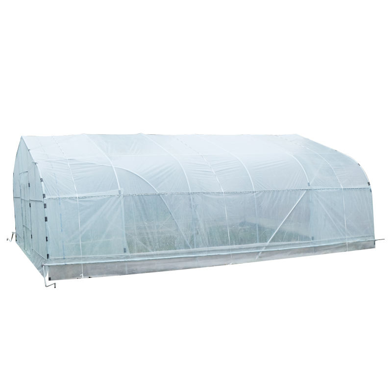 Galvanized Steel Framework Single Span Greenhouse For Tomato
