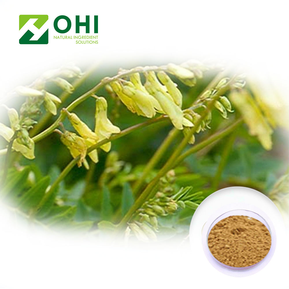 Natural herb astragalus root extract 70% polysaccharide