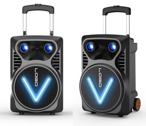 2018 Newest and private model portable 8inch trolley speaker with special smile shining LED face