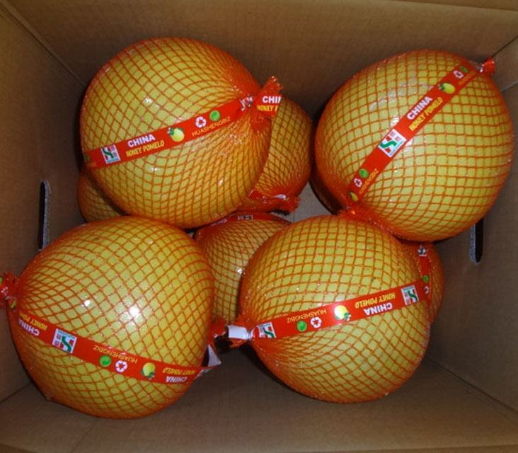 2020 Fujian Honig Pomelo <span class=keywords><strong>Grapefruit</strong></span> von unserer fabrik