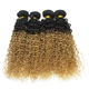 Professional Factory Specialize In Unprocessed Virgin Human Hair Products wet kiss hair