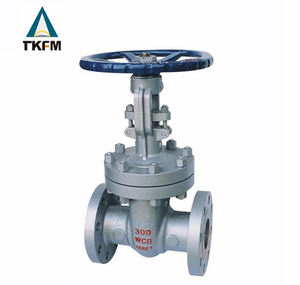 WCB standard gear flanged api 6 12 inch cast steel astm sluice gate valve pn 16 a216 wcbstainless steel