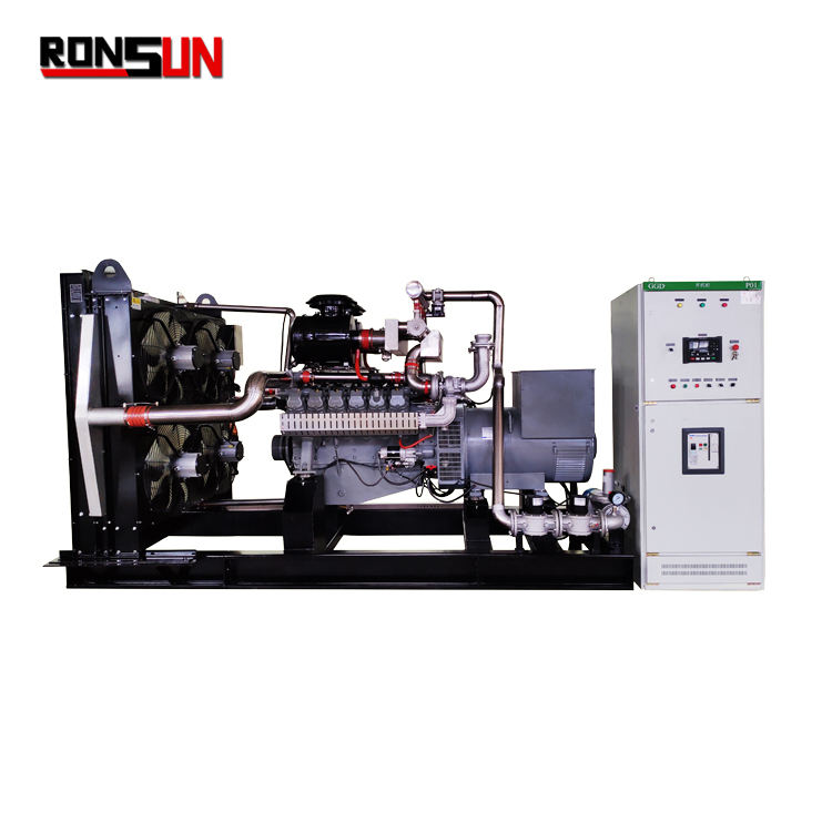 Hot selling bio gas generator 230V with CHP device