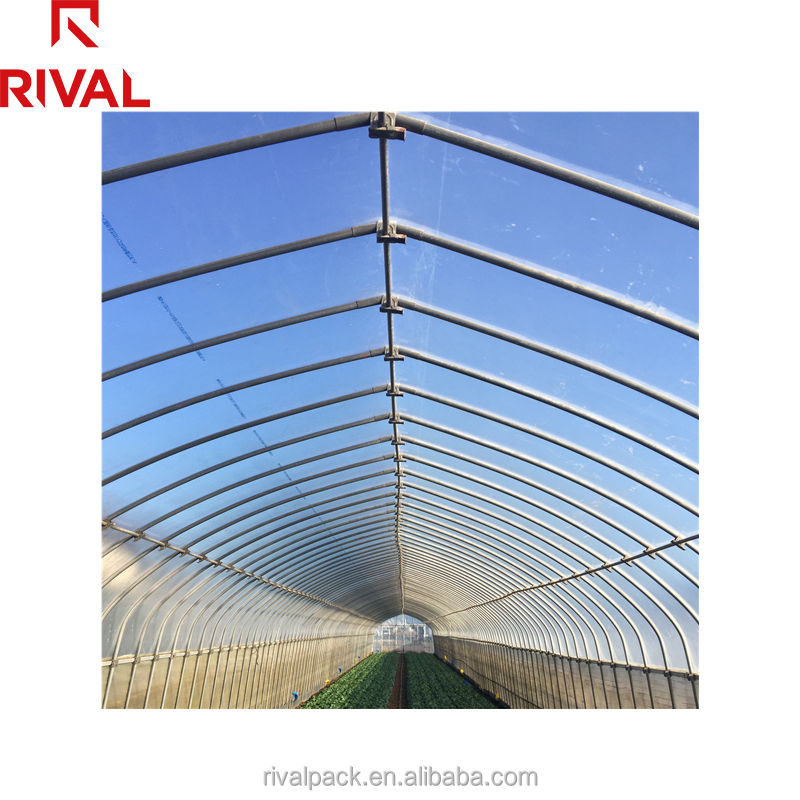 Commercial Galvanized Steel Frame Garden Greenhouse film