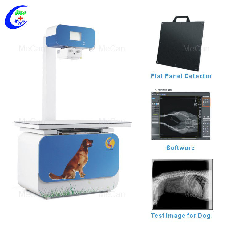 200MA Medical Animal Digital X Ray Machine Cost, Veterinary X Ray Equipment