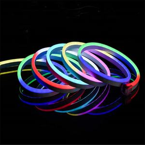 Dream V10 Dynamic Pixel RGB 10*20mm Nee Neon Light Digital RGB Led Neon Flex IP68 for Outdoor Swimming Pool Decoration