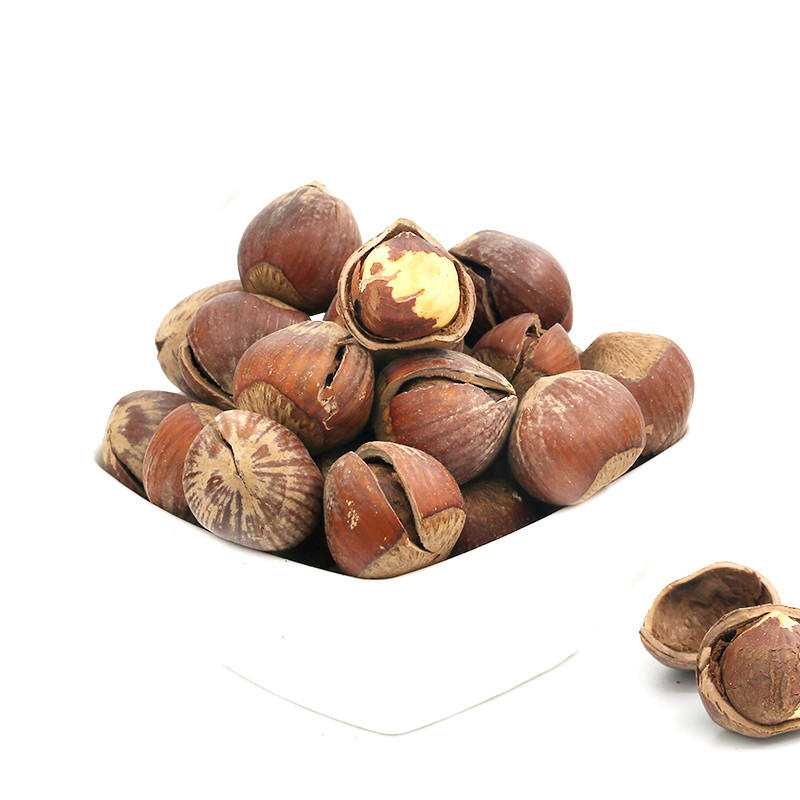 100% Organic Shell Raw Hazelnut / Raw Hazelnut Kernels In Shell