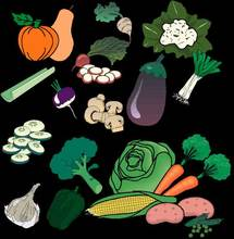 Seeds:Tomato,Beans,Cabbage,Carrot,Celery,Salad,Cucumber,Eggplant,Lettuce,Melon,Okra/Gombo,Onion,Pepper,Radish,Squash,Watermelon