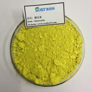 China Product Organic Sophora Japonica Extract Powder Quercetin Bulk
