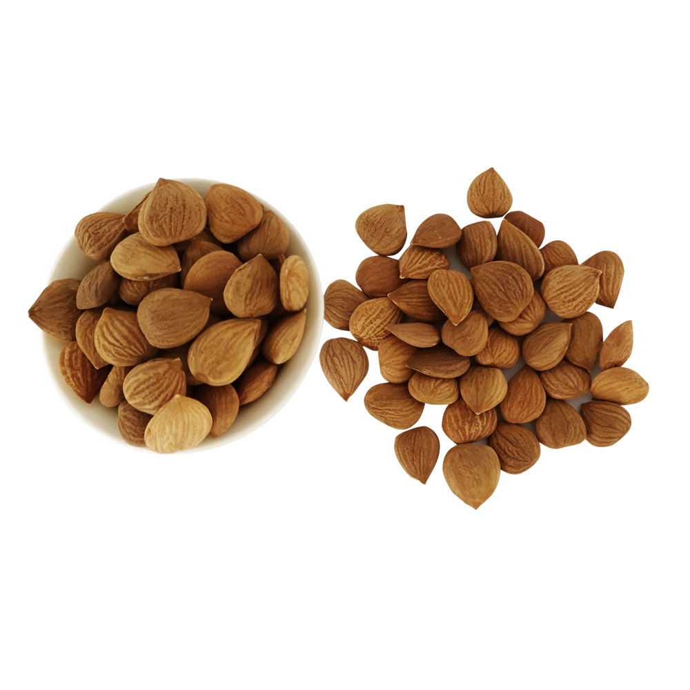 1LB package Raw and Organic Bitter Apricot Kernels with B17